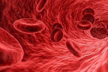 krvna slika