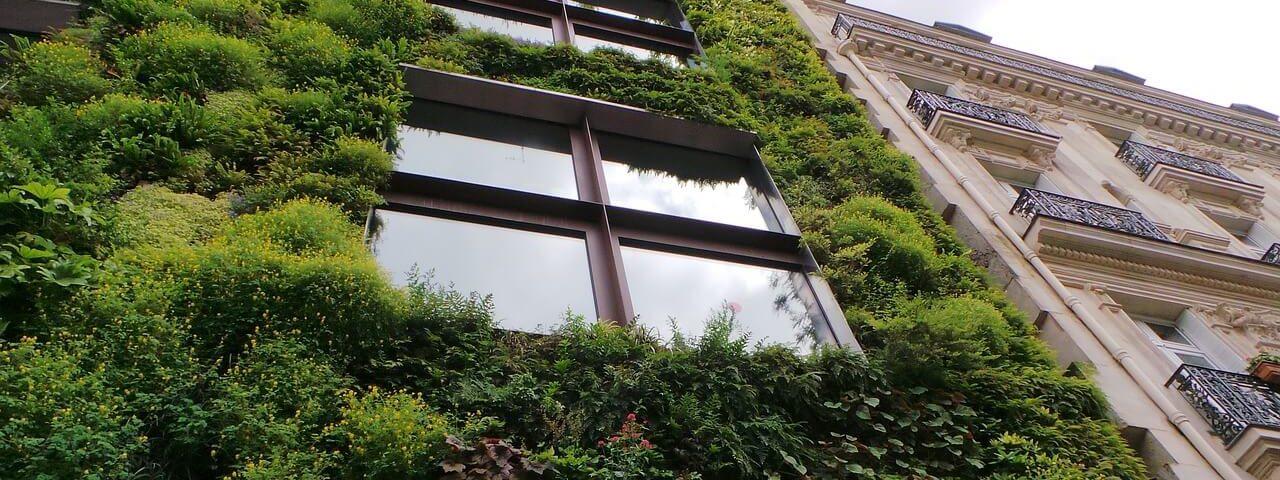 zelena zgrada
