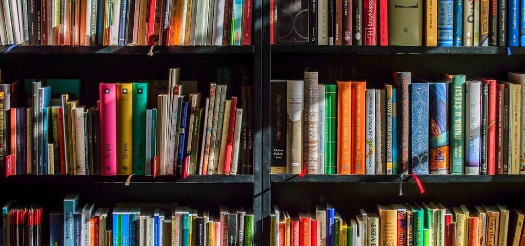 knjige-biblioteka-citanje-stampana-knjiga